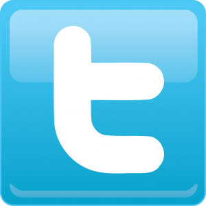 TwitterIcon[1]